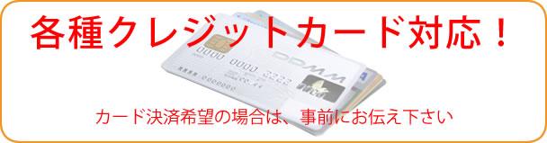 各種クレジット決済対応可能